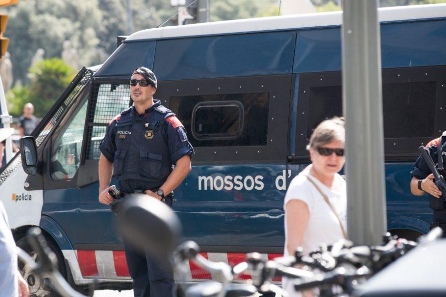 regionale politiediensten