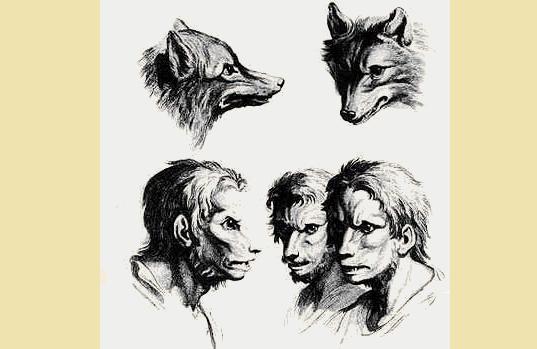 Homo homini lupus