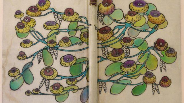 Boekband van Gabrielle Canivet